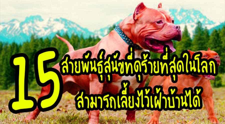สายพันธุ์สุนัข
