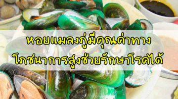 หอยแมลงภู่ มีคุณค่าทางโภชนาการสูงช่วยรักษาโรคได้
