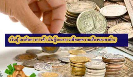 เงินกู้ เครดิตทางการค้า เงินกู้ระยะยาวเพื่อลดความเสี่ยงขององค์กร