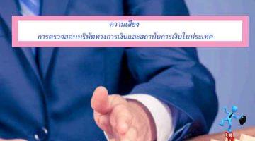 ความเสี่ยง การตรวจสอบบริษัททางการเงินและสถาบันการเงินในประเทศ